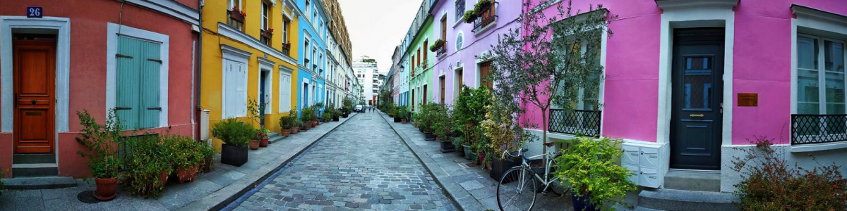 París: sobre el asfalto crece el campo